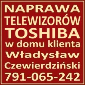Serwis TV Toshiba