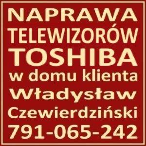 Toshiba Serwis TV