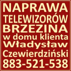 Naprawa Telewizorów Brzezina 883521538