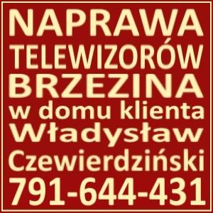 Naprawa Telewizorów Brzezina 791644431
