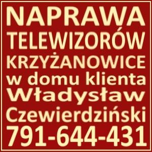 Naprawa Telewizorów Krzyżanowice 791644431
