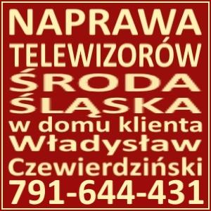 Naprawa Telewizorów  Środa Śląska 791644431