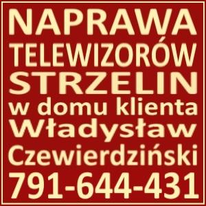 Naprawa Telewizorów Strzelin 791644431